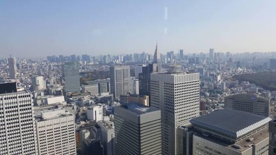 tokyo-met-building