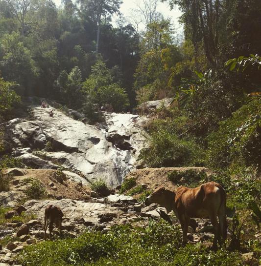 Waterfall Pai 2 .png